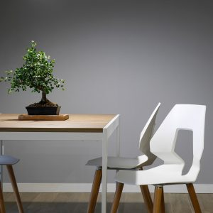 bonsai-chair